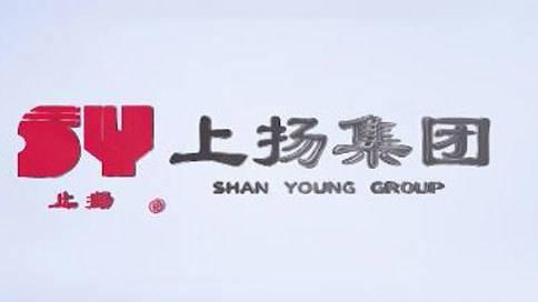 上扬集团宣传片